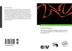 Bookcover of Willo Flood