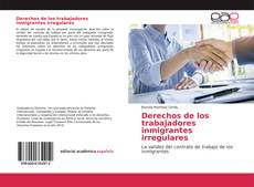 Portada del libro de Derechos de los trabajadores inmigrantes irregulares