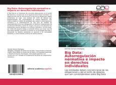Bookcover of Big Data: Autorregulación normativa e impacto en derechos individuales