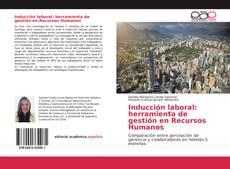 Inducción laboral: herramienta de gestión en Recursos Humanos的封面