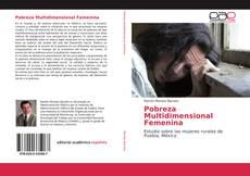 Pobreza Multidimensional Femenina kitap kapağı