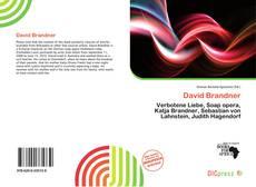 Couverture de David Brandner