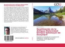 Reutilización de la Antigua Maternidad Enrique Sotomayor de Guayaquil的封面