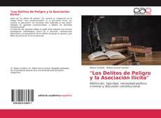 """Bookcover of """"Los Delitos de Peligro y la Asociación Ilícita"""""""