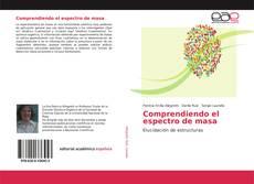Bookcover of Comprendiendo el espectro de masa