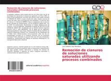 Bookcover of Remoción de cianuros de soluciones saturadas utilizando procesos combinados
