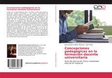 Bookcover of Concepciones pedagógicas en la formación docente universitaria