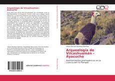 Arqueología de Vilcashuamán - Ayacucho kitap kapağı