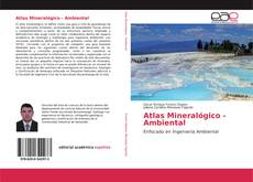 Borítókép a  Atlas Mineralógico - Ambiental - hoz