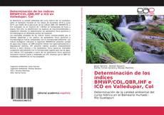 Portada del libro de Determinación de los índices BMWP/COL,QBR,IHF e ICO en Valledupar, Col