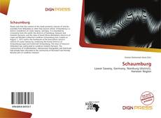 Bookcover of Schaumburg