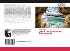 Bookcover of ¿Qué tan grande es una cueva?