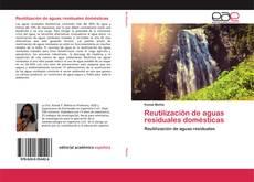 Reutilización de aguas residuales domésticas的封面