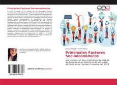 Principales Factores Socioeconómicos kitap kapağı