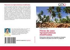Bookcover of Fibras de coco lignocelulósicas modificadas