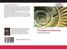 Обложка Pedagogía del Bienestar