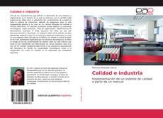 Calidad e industria的封面