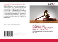 Bookcover of Protección del Inversionista Extranjero bajo la Ley 20.848