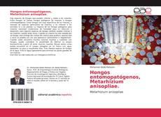Portada del libro de Hongos entomopatógenos, Metarhizium anisopliae.