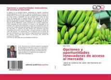Bookcover of Opciones y oportunidades innovadoras de acceso al mercado