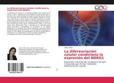 Copertina di La diferenciación celular condiciona la expresión del NDRG1