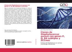 Обложка Clones de Staphylococcus aureus con genes P, Q, BA subtipos y SCCmec
