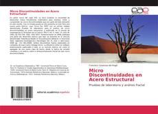 Обложка Micro Discontinuidades en Acero Estructural