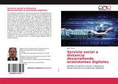 Servicio social a distancia desarrollando ecosistemas digitales的封面