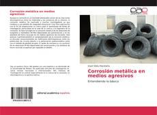 Corrosión metálica en medios agresivos的封面