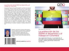 Buchcover von La protección de los DDHH al desarrollo y al trabajo en Colombia