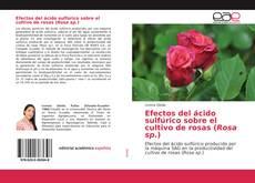 Bookcover of Efectos del ácido sulfúrico sobre el cultivo de rosas (Rosa sp.)