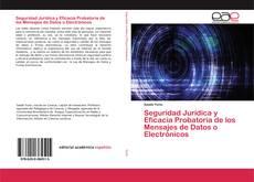 Seguridad Jurídica y Eficacia Probatoria de los Mensajes de Datos o Electrónicos kitap kapağı