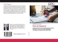 Plan de Negocio的封面