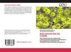 BIOLIXIVIACIÓN DE COBRE kitap kapağı