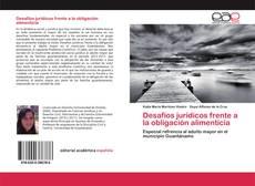 Desafíos jurídicos frente a la obligación alimenticia kitap kapağı