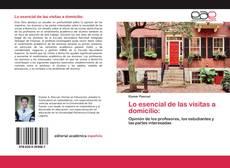 Bookcover of Lo esencial de las visitas a domicilio: