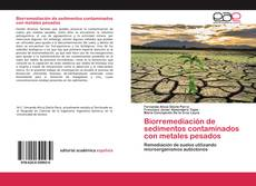 Copertina di Biorremediación de sedimentos contaminados con metales pesados