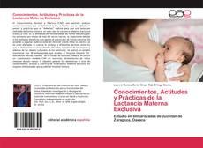 Borítókép a  Conocimientos, Actitudes y Prácticas de la Lactancia Materna Exclusiva - hoz