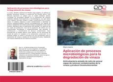 Copertina di Aplicación de procesos microbiológicos para la degradación de vinaza
