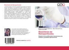 Biosíntesis de Nanopartículas kitap kapağı
