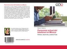 Capa do livro de Panorama actual del biodiésel en México