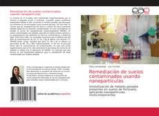 Copertina di Remediación de suelos contaminados usando nanopartículas