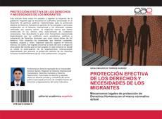 Portada del libro de PROTECCIÓN EFECTIVA DE LOS DERECHOS Y NECESIDADES DE LOS MIGRANTES