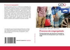 Обложка Proceso de engargolado