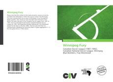Bookcover of Winnipeg Fury