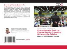 Procedimeinto Para La Evaluacion De Proyectos De Inversión Pública的封面