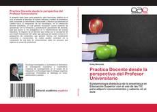 Practica Docente desde la perspectiva del Profesor Universitario的封面