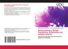 Buchcover von Antocianinas y Ácido Carmínico: Colorantes en celdas solares
