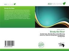 Brody the Bear的封面