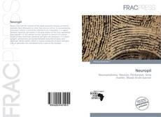 Capa do livro de Neuropil